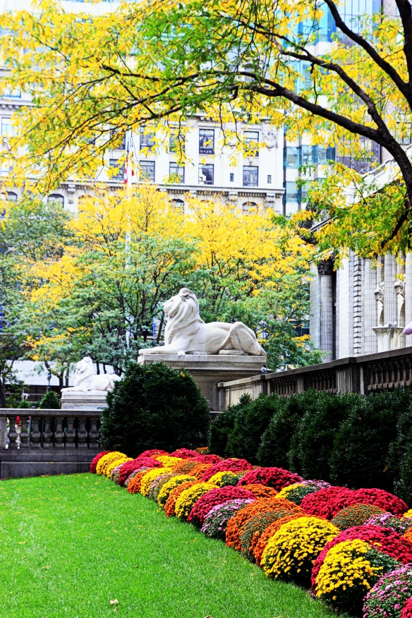 New York Public Library in the fall