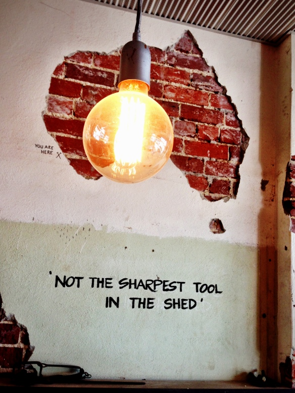 'Not the sharpest tool in the shed.'