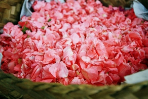 basket of petals, Bali, by @debsnet
