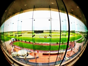Caulfield Racecourse view from the HBE conference