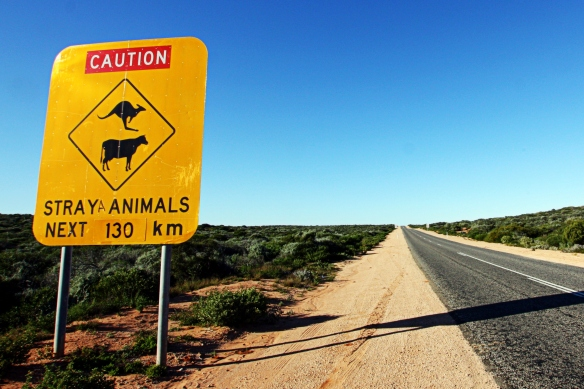 Straya animals, by @debsnet