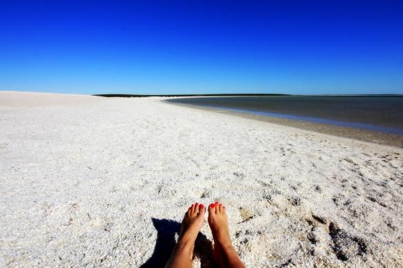 Shell Beach, by @debsnet