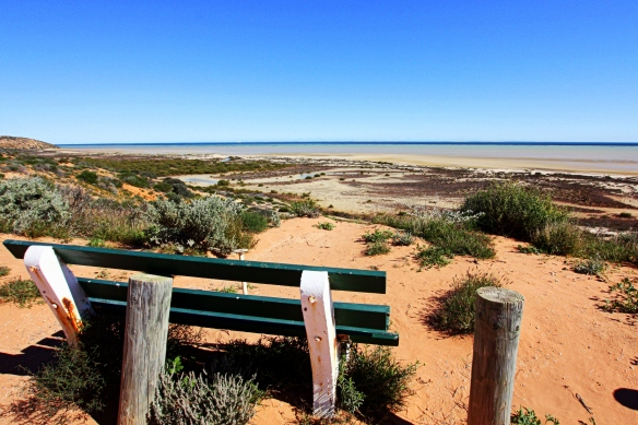 Shark Bay, by @debsnet