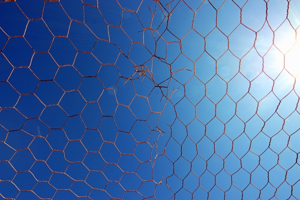 wire against blue sky, by @debsnet