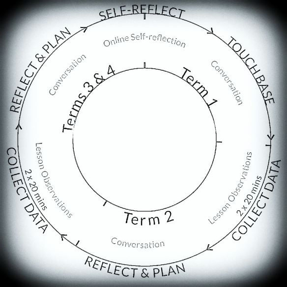 a visual look at our coaching-observation cycle