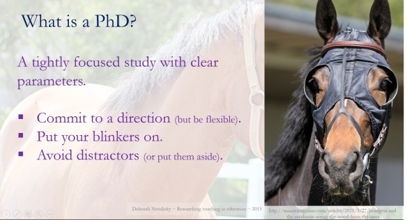 Put your PhD blinkers on