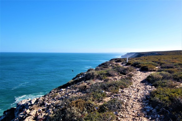 Bigurda Trail by Deborah Netolicky